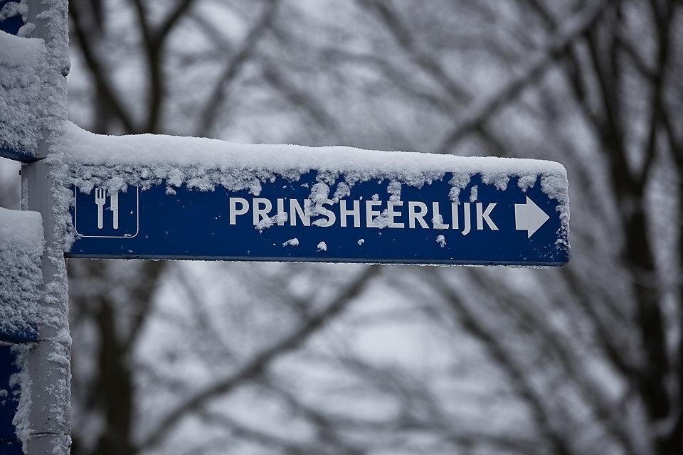 PrinsHSnow-5167.jpg